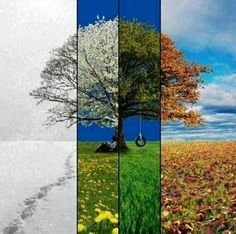 The Change of Times and Seasons